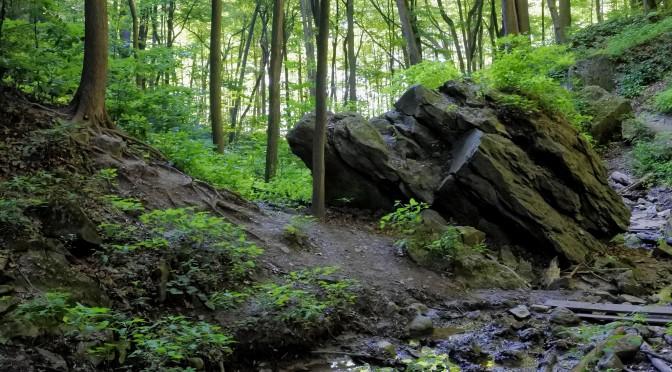Nikon 1 J5 landscape photography