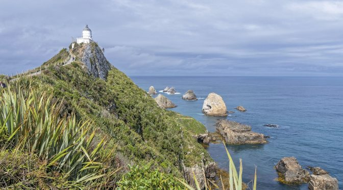 Composition Considerations at Nugget Point