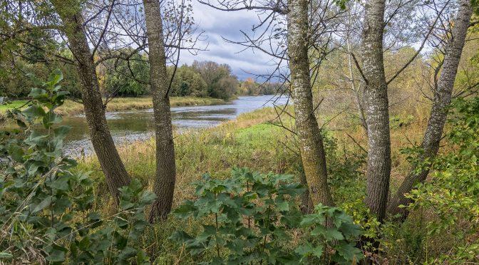 Wandering in Wellington County