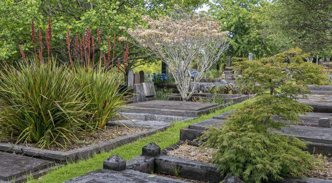 A Visit to Te Henui Cemetery