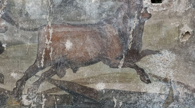 Pompeii Patterns and Details